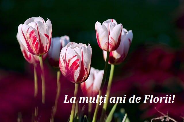 Mesaje de Florii 2020 - Felicitari de Florii 2020 - Imagini cu mesaje frumoase de Florii. Urari de Florii 2020. La multi ani de Florii 2020!