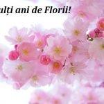 Mesaje de Florii 2020. Felicitări de Florii 2020: Imagini cu mesaje frumoase de Florii