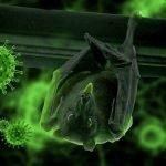 Cazuri coronavirus România 13 mai 2020. Câte cazuri noi s-au înregistrat în ultimele 24 de ore?