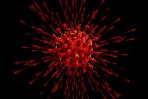 Coronavirus 12 august 2020