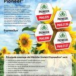Hibrizi linoleici Pioneer, rezultate peste aşteptări şi pe timp de secetă