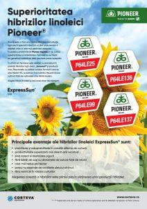 Hibrizi linoleici Pioneer