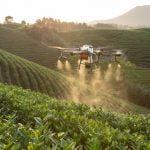 Cum poate ajuta inteligenţa artificială domeniul agriculturii?