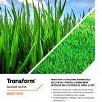 Corteva Agriscience prezintă TRANSFORM™, un insecticid care oferă protecţie de lungă durată împotriva afidelor