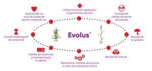 Fungicid EVOLUS