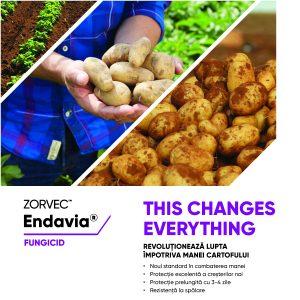Fungicidul ZORVEC ENDAVIA