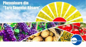 Summit Agro Romania