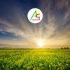 Agro Oil Service