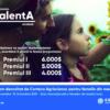 Programul TalentA 2021.