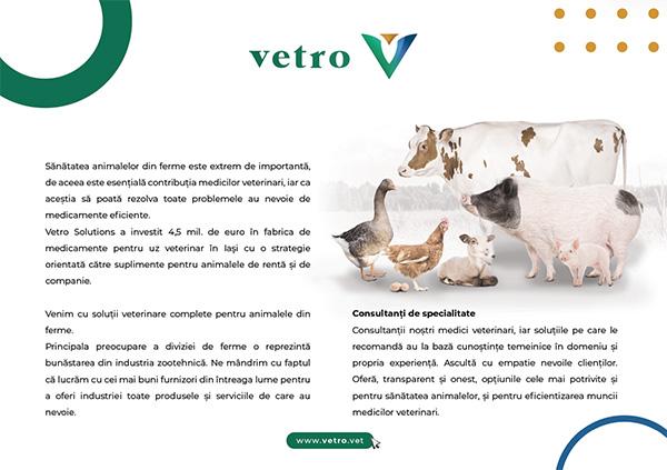 VETRO Solutions